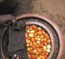 pot-in-pot3.jpg