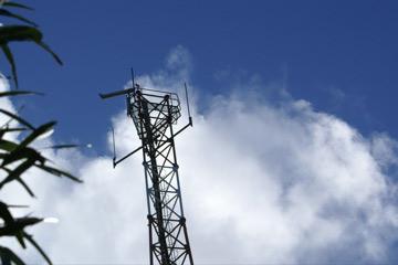 AntennaRGat.jpg