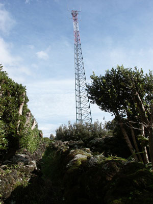 antena63.jpg