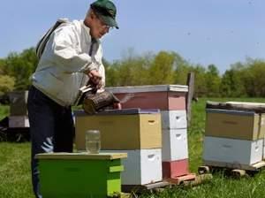 beekeper.jpeg