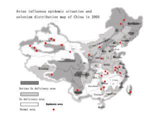 chinaSEmap.jpg